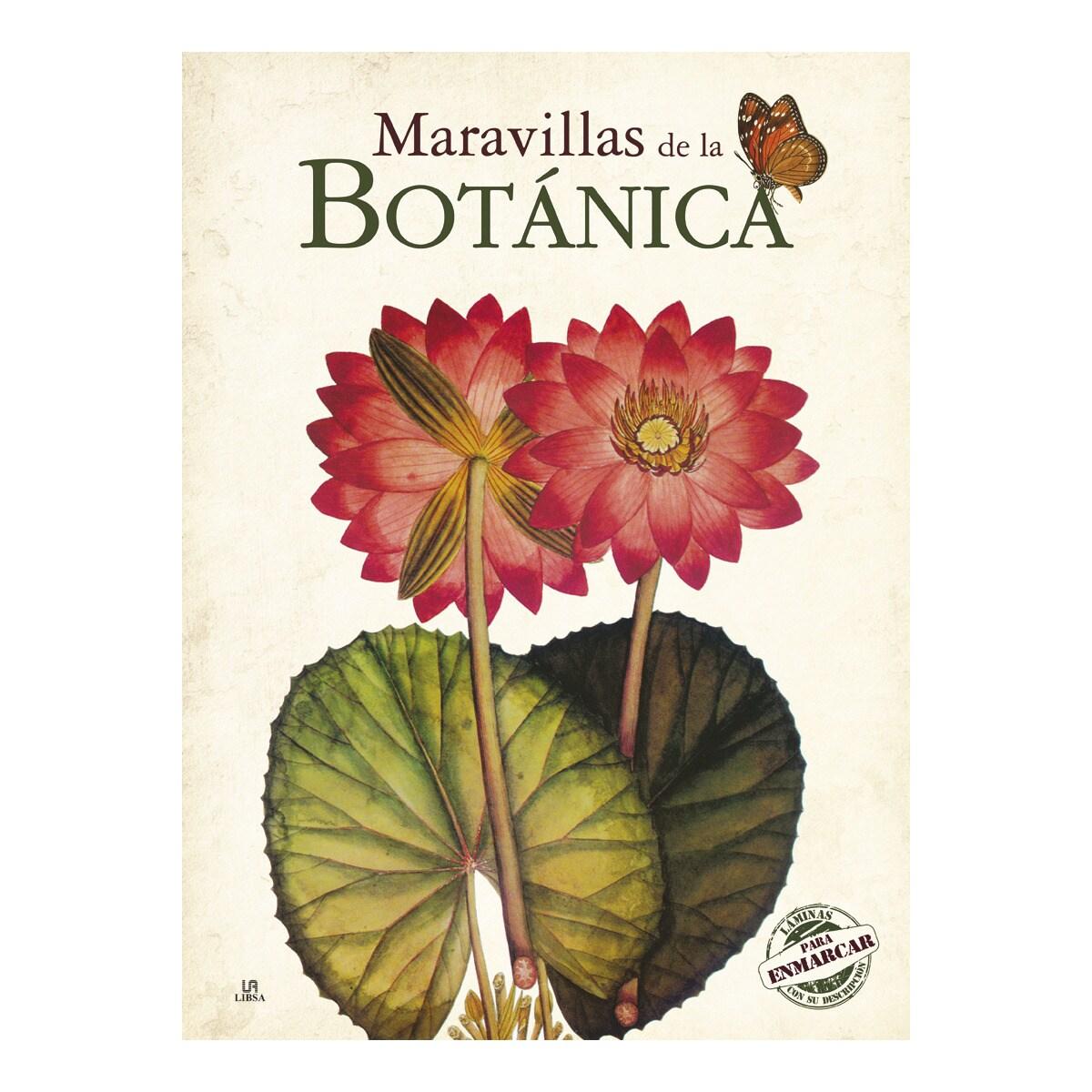Libro Maravillas de la botánica